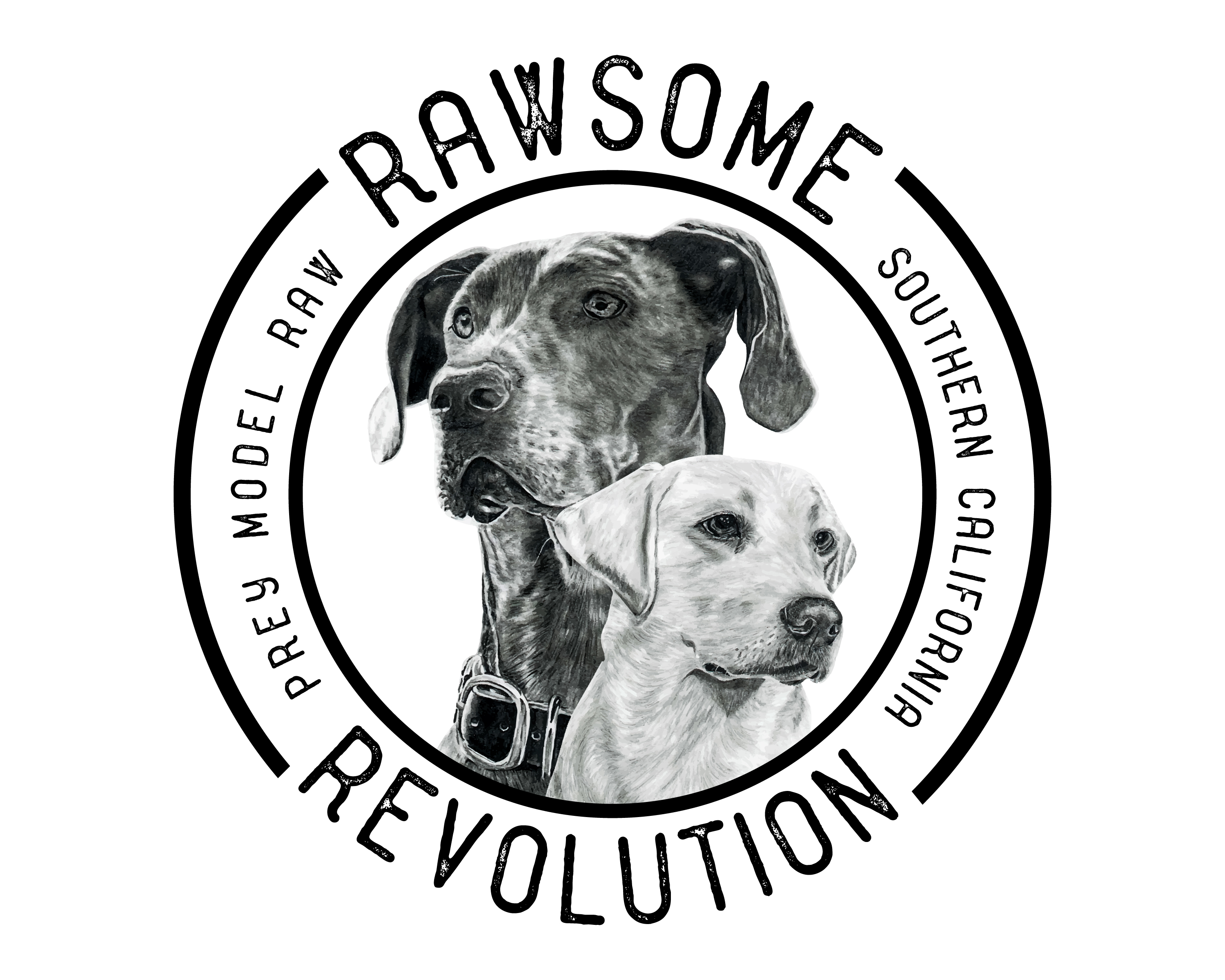 Welcome to Rawsome Revolution